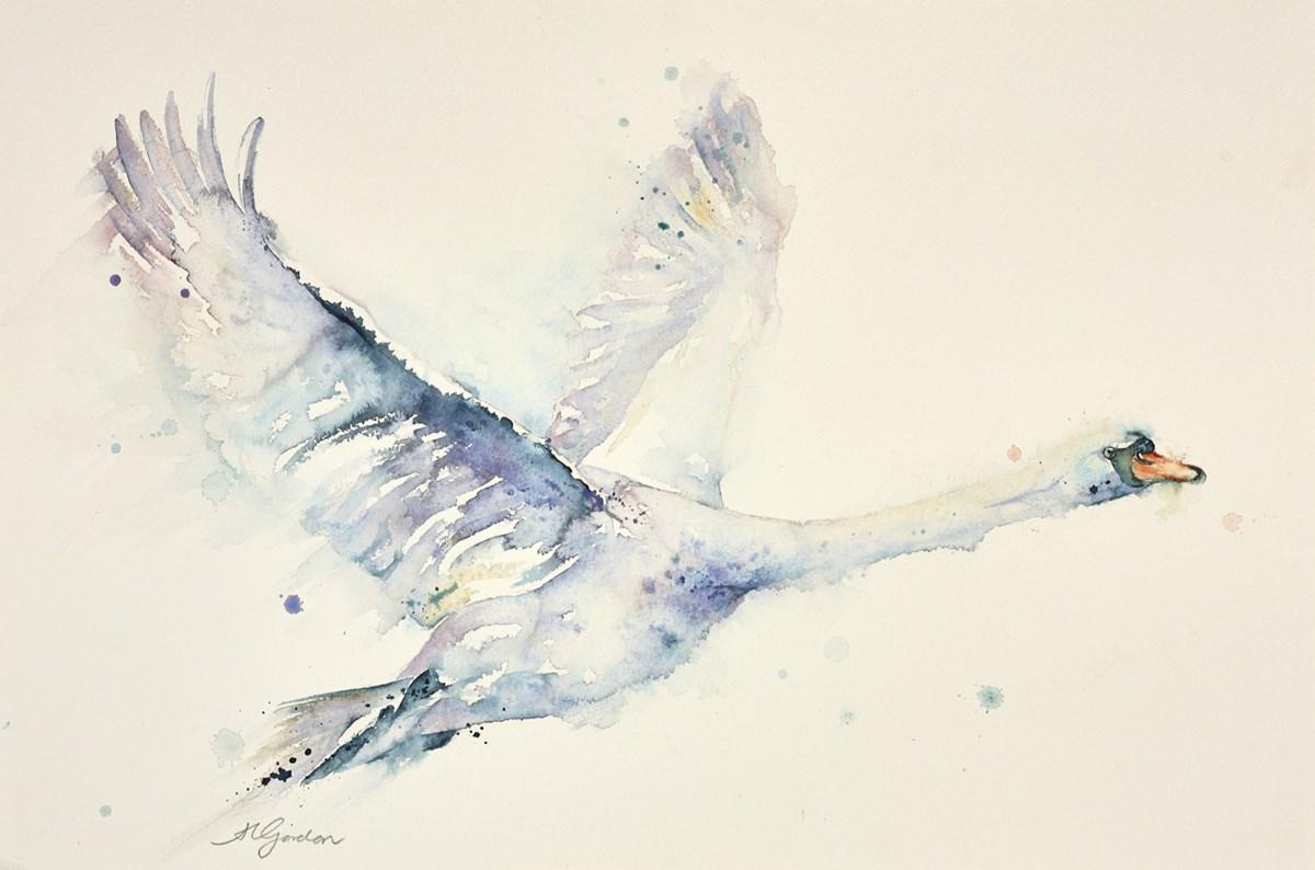 Solitary Flight -Mute Swan